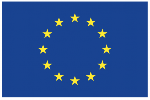 EU flag - a ring of yellow stars on a blue background